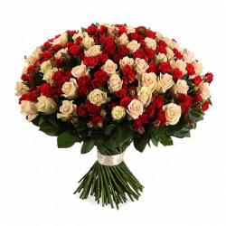"""Букет из красных и кремовых роз """"Инесса"""" - 101 шт., 70 см"""