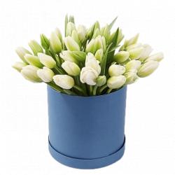 31 белый тюльпан в коробке