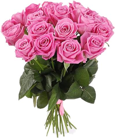 Букет роз Аква (21шт./70 см.)