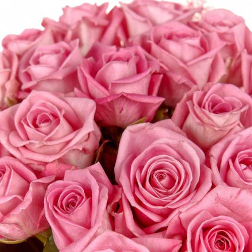 Букет розовых роз Аква (21шт./70 см.)