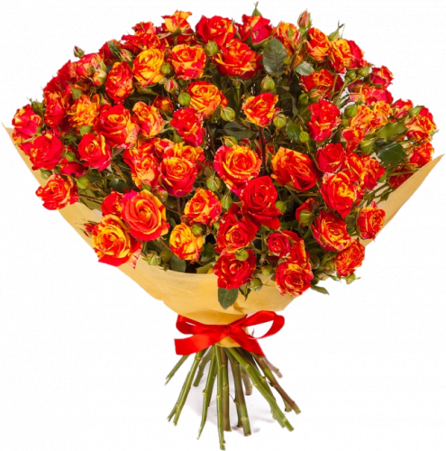 Букет кустовых роз Фаер Флеш (19шт./70-80см.)