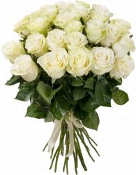 Букет белых роз (25шт./60 см.)
