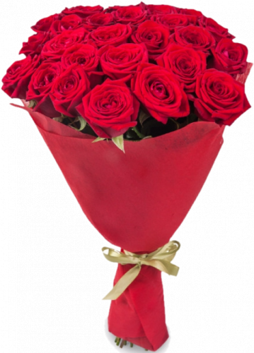Букет красных роз 25 шт, 70 см