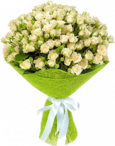 Букет кремовых кустовых роз 35 шт - 70 см