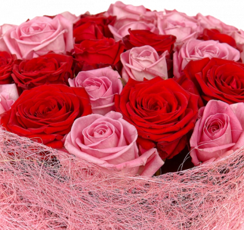 Илиана (розы: 51 шт./60 см.)