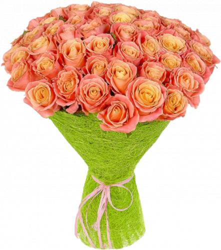 Букет роз Мисс Пигги (51шт./60 см)
