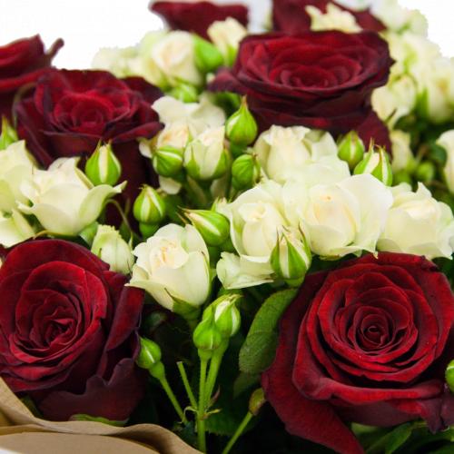 Каролина (розы: 19 шт./70 см.)
