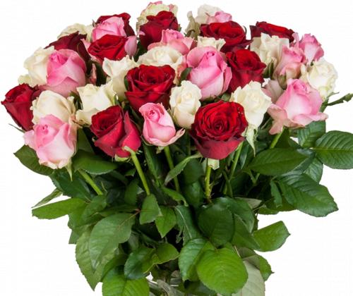 Таисия №3 (розы: 35 шт./70 см.)