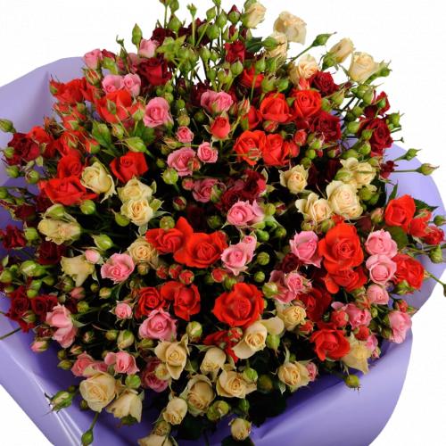 Изольда (роза: 21 шт./70 см.)