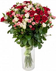 Виолетта (роза: 29 шт./70 см.)