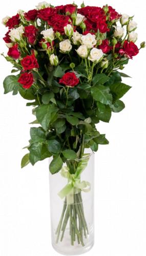 Букет из розы спрей (19 шт./70 см.)