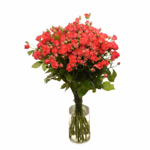 Букет из кустовых роз Ванесса (19 шт./60 см)
