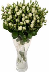 Букет из белых кустовых роз Сноу Флейк 19 шт - 70-80 см
