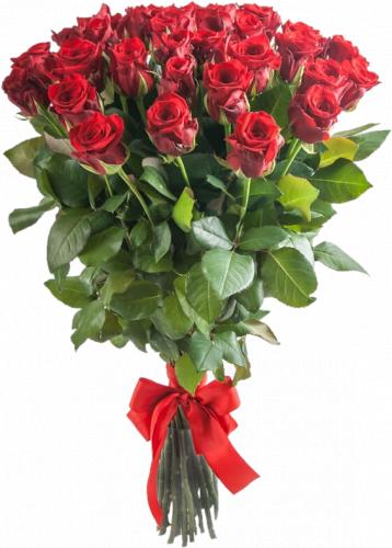 Букет из 25 красных роз Маричка (25 шт./60 см)