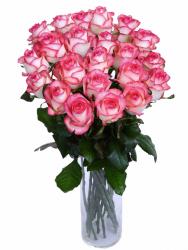 Букет из 25 роз Джумилия (25 шт./70 см)