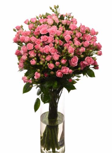 Букет из розы роз спрей Грация (19 шт./60 см.)
