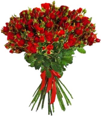 Букет из 25 красных кустовых роз (25 шт./70-80 см)