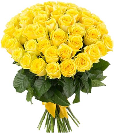 Букет 51 желтая роза (Сорт: Пенни Лейн; 60 см)