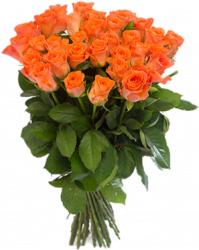 Букет из оранжевых роз Вау (33 шт/60 см.)