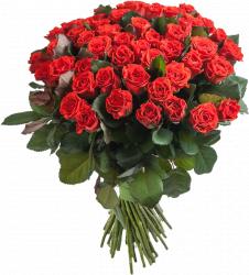 Букет из красных роз Эль Торо - 51 шт, 60 см