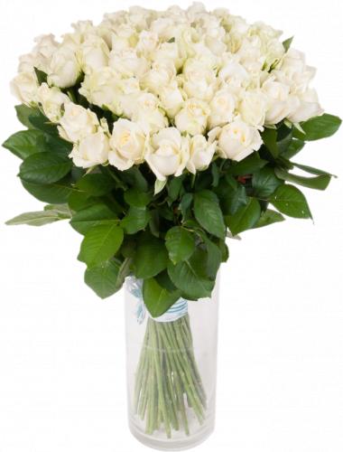 Букет из белых роз Аваланч, белые цветы (51 шт./60 см)