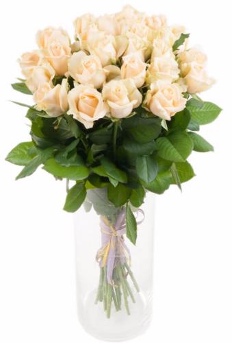 Букет кремовой розы Пич Аваланч 25 шт, 60 см