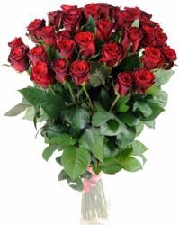 Букет из красных роз Гран При 35 шт, 70 см