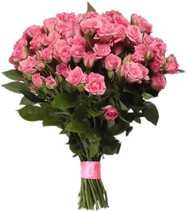 Букет кустовых розовых роз 60 см – 31 шт