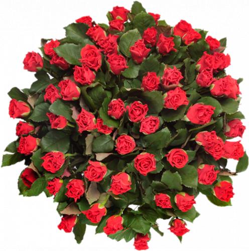 Букет из красных роз Эль Торо – 59 шт, 70 см