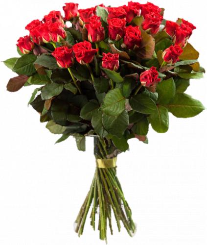 Букет из красных роз Эль Торро 35 шт, 70 см