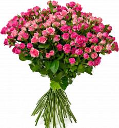 Букет кустовых розовых роз Лавли Лидия и Грация 60 см – 39 шт