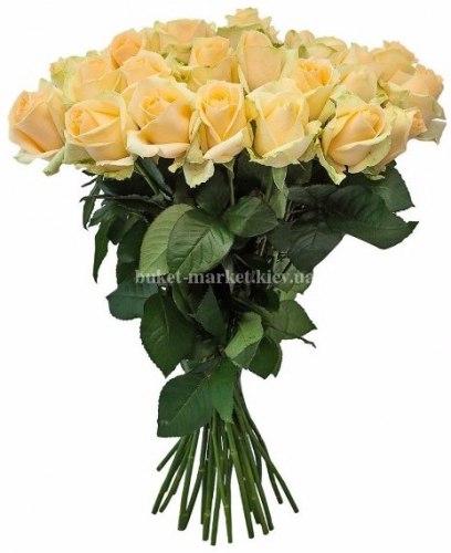 Букет цветов из кремовых роз Пич Аваланч 35 шт, 50 см