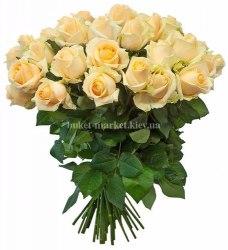 Букет цветов из кремовых роз Пич Аваланч 51 шт, 50 см