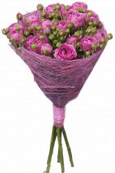 Букет пионовидных роз Мисти баблз 50 см - 5 шт