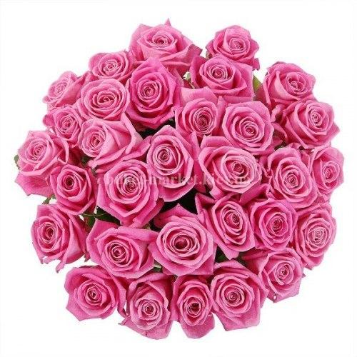 Букет розовых роз Аква 35 шт, 70 см