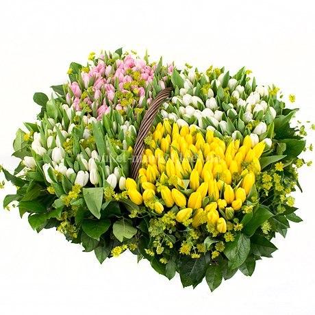 "Корзина из тюльпанов ""Весна"" 251шт"