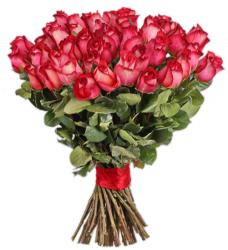 51 роза Игуазу 90-100 см
