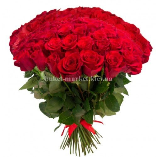 101 роза Фридом 90-100 см