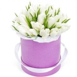 Тюльпаны в коробке 51 шт