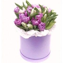 Сиреневые и белые тюльпаны в коробке 51 шт
