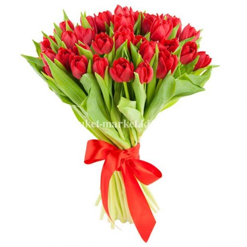 Букет из 31 красного тюльпана