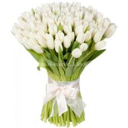 Букет из 75 белых тюльпанов