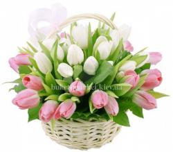Корзина из 45 тюльпанов