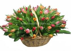 Корзина из 101 цветного тюльпана