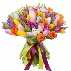 Букет из 75 цветных тюльпанов