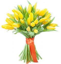 Букет желтых тюльпанов 29 шт