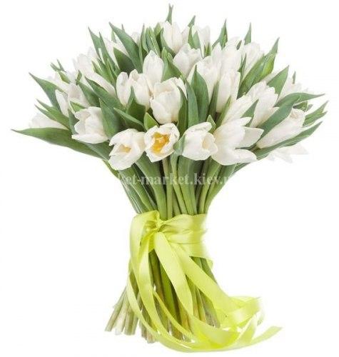Букет из 45 белых тюльпанов с длинной лентой