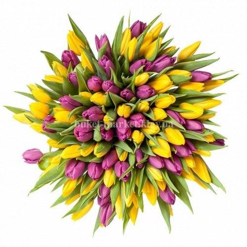 Букет из желтых и фиолетовых тюльпанов 101 шт