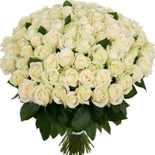 101 белая роза - 50 см