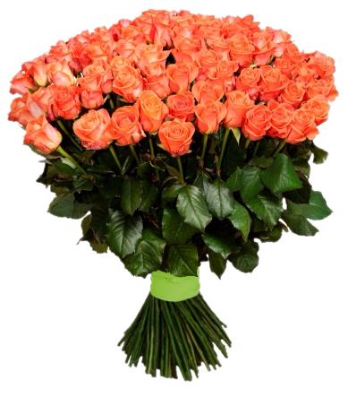 Букет 101 оранжевая роза - 70 см